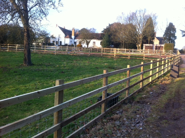 Post and Rail fencing with sheep netting