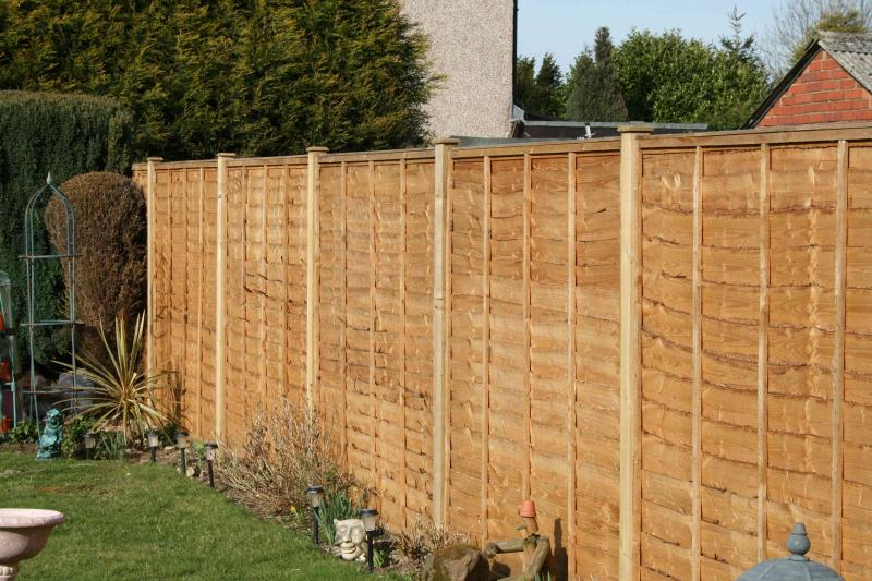 Waney edge panel fence